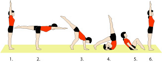 gymnastics the halfhandstand to forward roll  a really